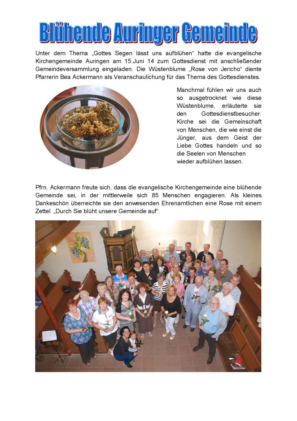 17-Godi+Gemeindevers.+Mitarbeiterfest 15.06.14-001
